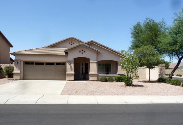 14270 W Fairmount Avenue, Goodyear, AZ 85395 (MLS #5803531) :: Arizona Best Real Estate