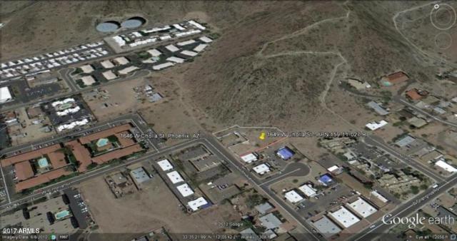 11255 N 17th Avenue, Phoenix, AZ 85029 (MLS #5803618) :: Yost Realty Group at RE/MAX Casa Grande