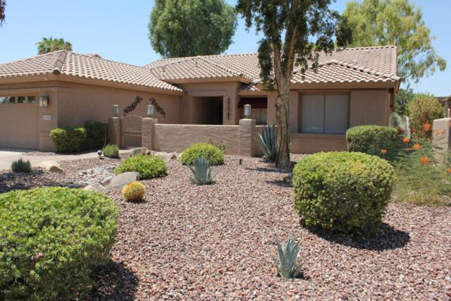 5412 S Amberwood Drive, Sun Lakes, AZ 85248 (MLS #5803729) :: Gilbert Arizona Realty