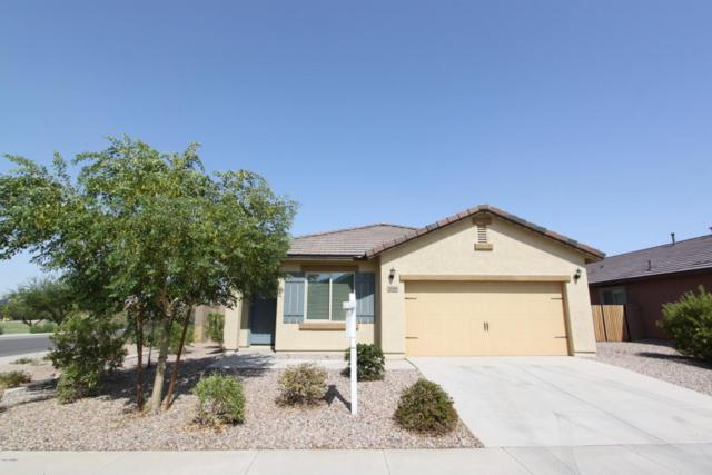 20389 N Mac Neil Street, Maricopa, AZ 85138 (MLS #5803757) :: Yost Realty Group at RE/MAX Casa Grande