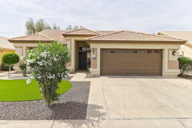 15021 W Indianola Avenue, Goodyear, AZ 85395 (MLS #5803817) :: Kortright Group - West USA Realty
