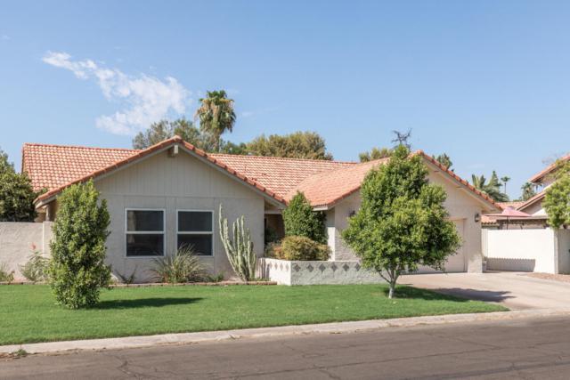 972 E Eveningstar Lane, Tempe, AZ 85283 (MLS #5803869) :: Yost Realty Group at RE/MAX Casa Grande