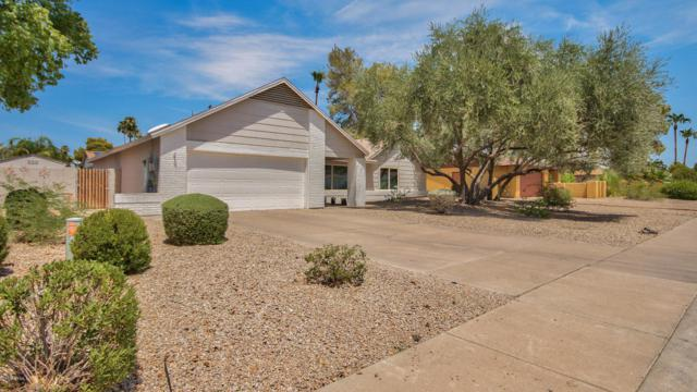 4818 E Andora Drive, Scottsdale, AZ 85254 (MLS #5803907) :: Kelly Cook Real Estate Group