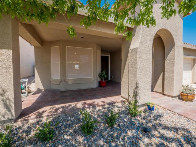 34182 N Cobble Stone Drive, San Tan Valley, AZ 85143 (MLS #5803963) :: Yost Realty Group at RE/MAX Casa Grande