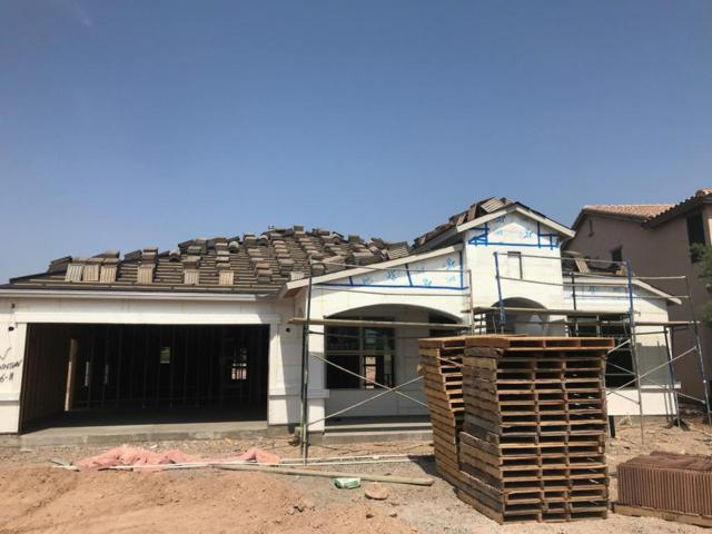 30882 N 126TH Drive, Peoria, AZ 85383 (MLS #5803971) :: Occasio Realty