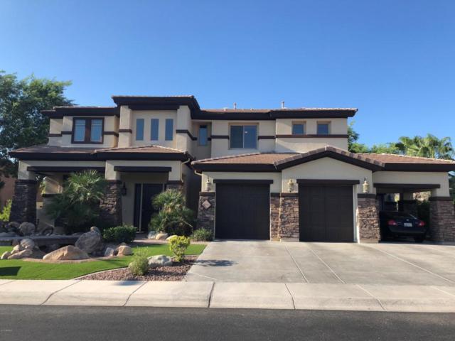 9290 W Molly Lane, Peoria, AZ 85383 (MLS #5804032) :: The Daniel Montez Real Estate Group