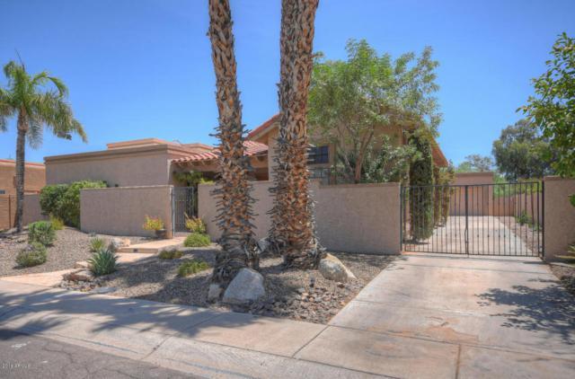 9095 N 103rd Place, Scottsdale, AZ 85258 (MLS #5804034) :: RE/MAX Excalibur
