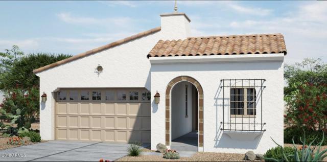 20704 W Meadowbrook Avenue, Buckeye, AZ 85396 (MLS #5804081) :: Phoenix Property Group