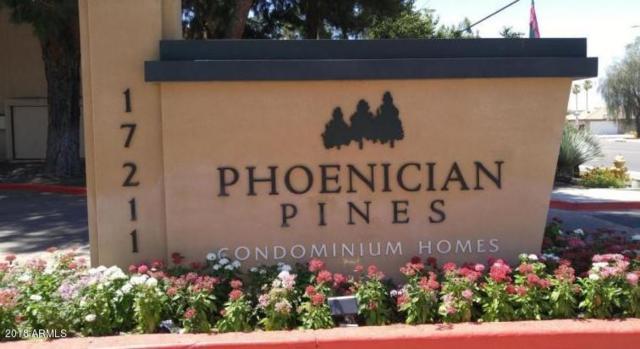 3405 W Danbury Drive D210, Phoenix, AZ 85053 (MLS #5804146) :: Team Wilson Real Estate