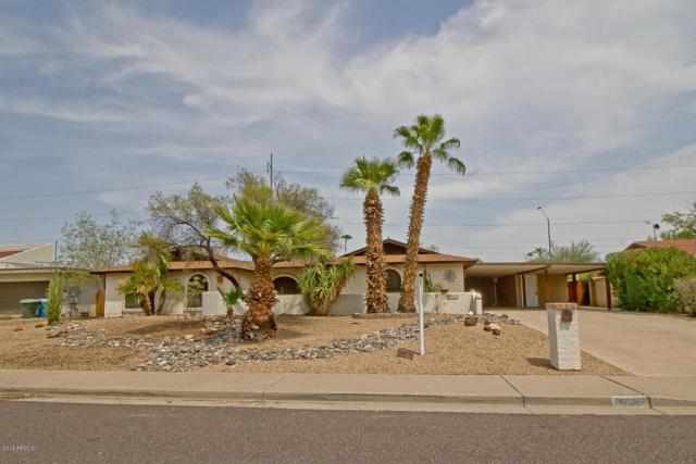 533 E Deepdale Road, Phoenix, AZ 85022 (MLS #5804148) :: Santizo Realty Group