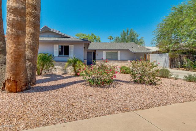 8708 E Sage Drive, Scottsdale, AZ 85250 (MLS #5804159) :: The W Group