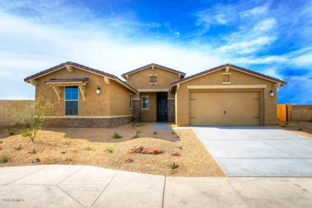 18288 W Thunderhill Place, Goodyear, AZ 85338 (MLS #5804168) :: Kortright Group - West USA Realty