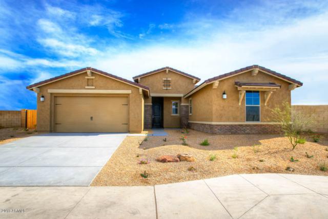 18240 W Thunderhill Place, Goodyear, AZ 85338 (MLS #5804187) :: The Garcia Group