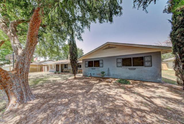 8428 N 17TH Avenue, Phoenix, AZ 85021 (MLS #5804204) :: Yost Realty Group at RE/MAX Casa Grande