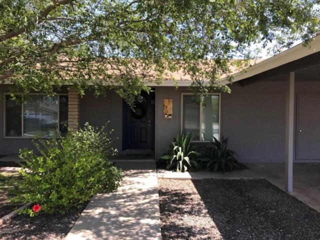 415 S Otero Circle, Litchfield Park, AZ 85340 (MLS #5804267) :: The Everest Team at My Home Group