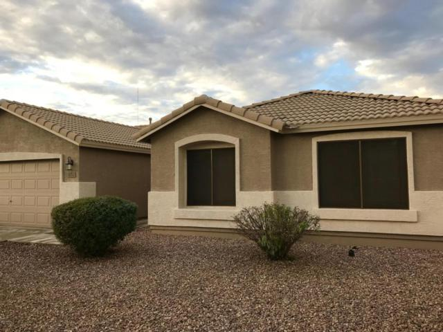 3666 E Camden Avenue, San Tan Valley, AZ 85140 (MLS #5804279) :: Yost Realty Group at RE/MAX Casa Grande