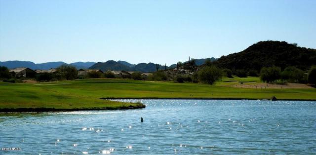 496 E Pasture Canyon Drive, San Tan Valley, AZ 85143 (MLS #5804389) :: Yost Realty Group at RE/MAX Casa Grande