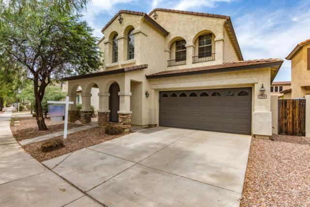 3756 E Stampede Drive, Gilbert, AZ 85297 (MLS #5804402) :: The Kenny Klaus Team