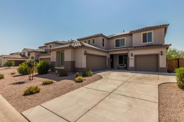 36124 N Vidlak Drive, San Tan Valley, AZ 85143 (MLS #5804478) :: Realty Executives