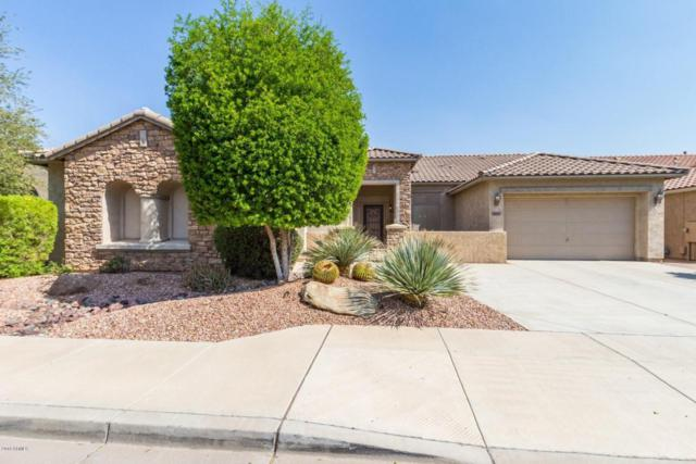 18006 W Royal Palm Road, Waddell, AZ 85355 (MLS #5804514) :: Kortright Group - West USA Realty