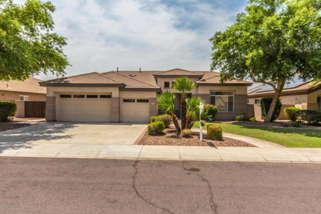 8547 W Mohawk Lane, Peoria, AZ 85382 (MLS #5804633) :: The W Group