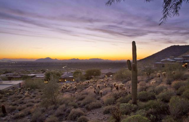 13039 N 116TH Street N, Scottsdale, AZ 85259 (MLS #5804705) :: Brett Tanner Home Selling Team