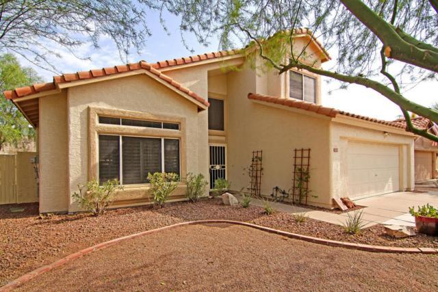 4334 E Rocky Slope Drive, Phoenix, AZ 85044 (MLS #5804733) :: Power Realty Group Model Home Center