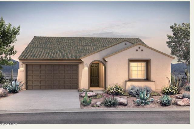 26023 W Quail Avenue, Buckeye, AZ 85396 (MLS #5804767) :: The Results Group
