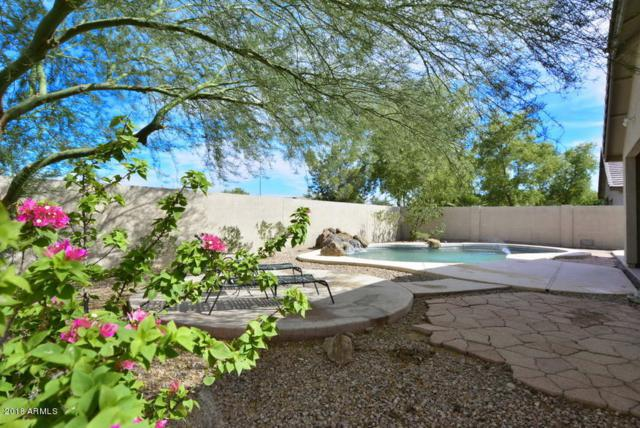 14783 N 145TH Avenue, Surprise, AZ 85379 (MLS #5804807) :: Occasio Realty
