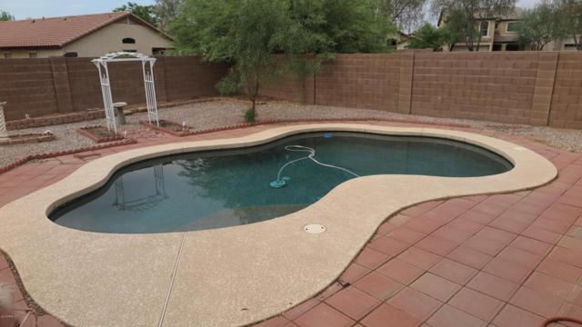 905 E Taylor Trail, San Tan Valley, AZ 85143 (MLS #5804912) :: Yost Realty Group at RE/MAX Casa Grande