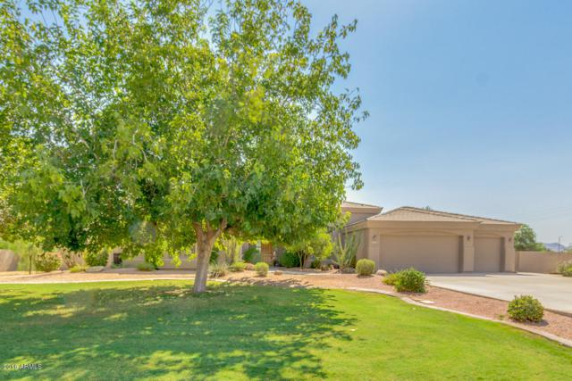 25103 S 138TH Place, Chandler, AZ 85249 (MLS #5805008) :: Occasio Realty