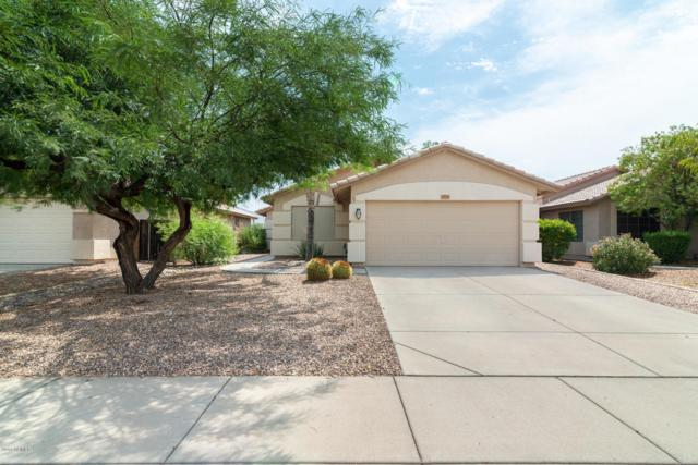 3905 S Conestoga Road, Apache Junction, AZ 85119 (MLS #5805021) :: The Bill and Cindy Flowers Team