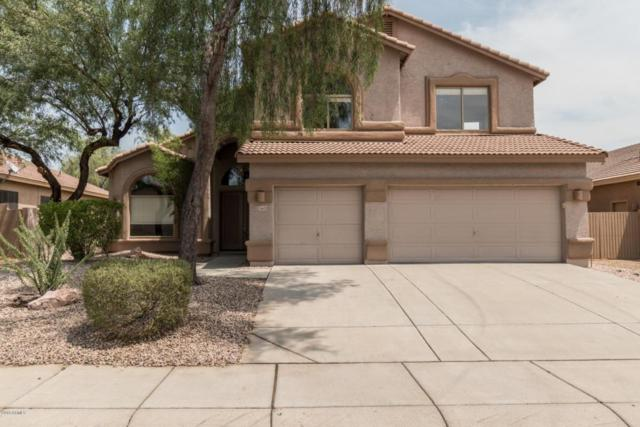 26629 N 41ST Way, Cave Creek, AZ 85331 (MLS #5805085) :: Riddle Realty