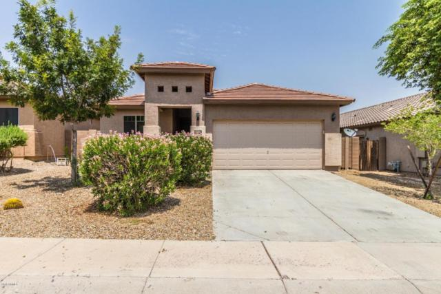 17952 W Sunnyslope Lane, Waddell, AZ 85355 (MLS #5805138) :: Kortright Group - West USA Realty