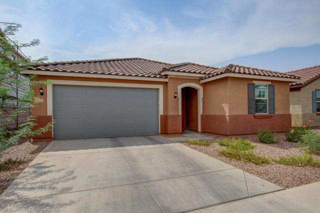 1416 N Claiborne, Mesa, AZ 85205 (MLS #5805190) :: The Everest Team at My Home Group