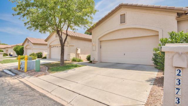 23737 S Pleasant Way, Sun Lakes, AZ 85248 (MLS #5805235) :: The Daniel Montez Real Estate Group