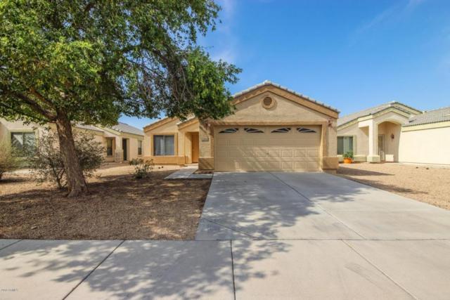 12826 W Myer Lane, El Mirage, AZ 85335 (MLS #5805291) :: Devor Real Estate Associates