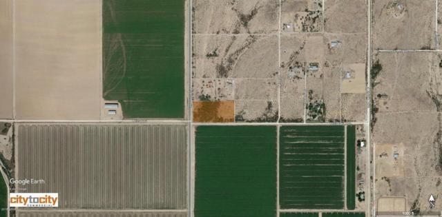 38612 W Missouri Avenue, Tonopah, AZ 85354 (MLS #5805317) :: The Daniel Montez Real Estate Group