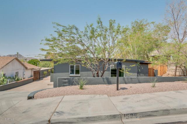 1536 E Sunnyslope Lane, Phoenix, AZ 85020 (MLS #5805330) :: Yost Realty Group at RE/MAX Casa Grande