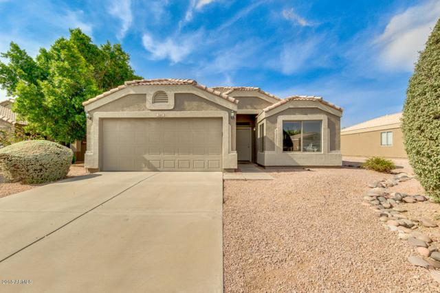 1064 W 23RD Court, Apache Junction, AZ 85120 (MLS #5805454) :: The Kenny Klaus Team