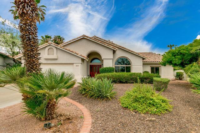 16441 N 50TH Street, Scottsdale, AZ 85254 (MLS #5805470) :: Occasio Realty
