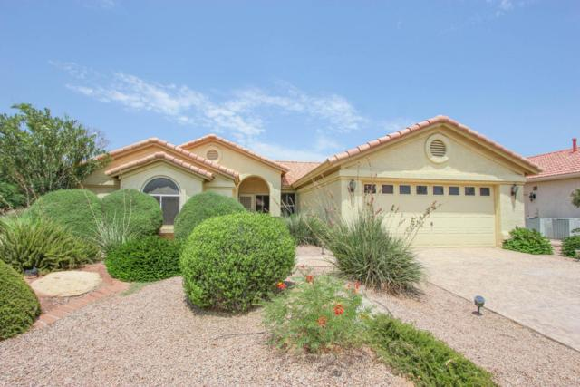 9102 E Crystal Drive, Sun Lakes, AZ 85248 (MLS #5805531) :: Gilbert Arizona Realty