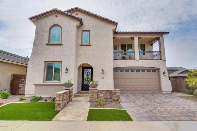 209 E Horseshoe Drive, Chandler, AZ 85249 (MLS #5805560) :: Gilbert Arizona Realty