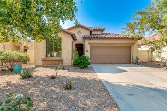 36278 W Prado Street, Maricopa, AZ 85138 (MLS #5805744) :: Yost Realty Group at RE/MAX Casa Grande