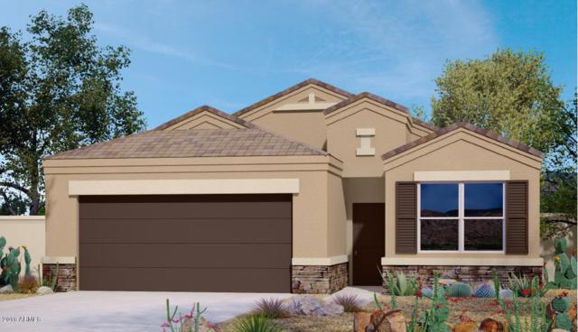 2410 E San Gabriel Trail, Casa Grande, AZ 85194 (MLS #5805822) :: Lifestyle Partners Team