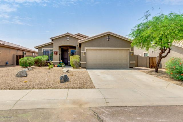 17529 W East Wind Avenue, Goodyear, AZ 85338 (MLS #5805826) :: Kortright Group - West USA Realty