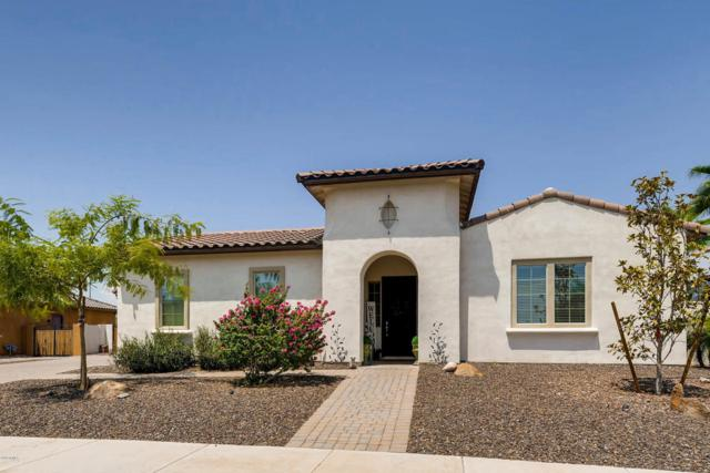 7174 W Rowel Road, Peoria, AZ 85383 (MLS #5805835) :: The Garcia Group @ My Home Group