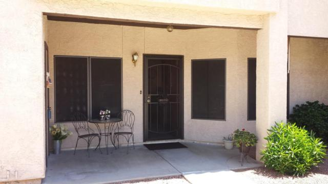 11666 N 28TH Drive #195, Phoenix, AZ 85029 (MLS #5805897) :: Team Wilson Real Estate