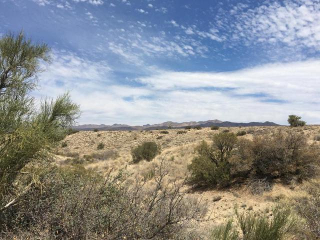 Lot 92 Moss Wash Road, Kingman, AZ 86401 (MLS #5805923) :: Lifestyle Partners Team