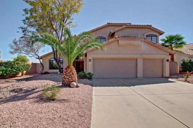 3531 E Manso Street, Phoenix, AZ 85044 (MLS #5805951) :: Kepple Real Estate Group